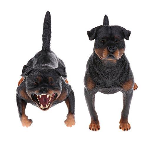 MagiDeal 2pcs Realistische Rottweiler Hund Haustier Tiermodell Tierfiguren Kinder Spielzeug Wohnkultur Sammlung