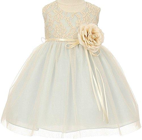 (Flower Girl Elegant Stretch Lace Tulle Tea Length Dress Blue (Baby) XL)