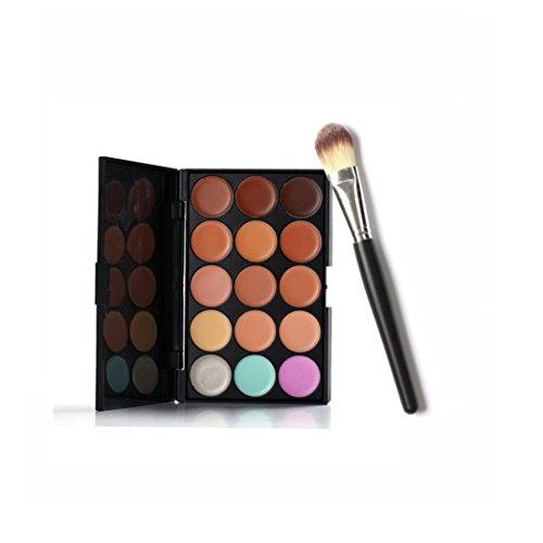 Ineternet Maquillage correcteur Contour Palette DE 15 Couleurs + Pinceau de Maquillage (Noir+)
