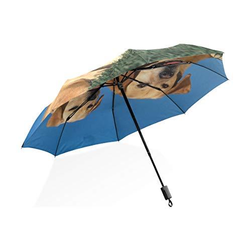 Isaoa Automatique Voyage Parapluie Compact Parapluie Pliable Chien Mignon Couple Coupe-Vent Ultra léger Protection UV Parapluie pour Homme ou Femme