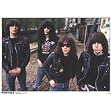 """Poster de música PLASTIFICADO. Ramones Amsterdam 1977 con cita en INGLES """"Ramones Amsterdam, July 1977"""". Medida estandarizada """"A1"""" aprox. 84,1 x 59,4 cm."""