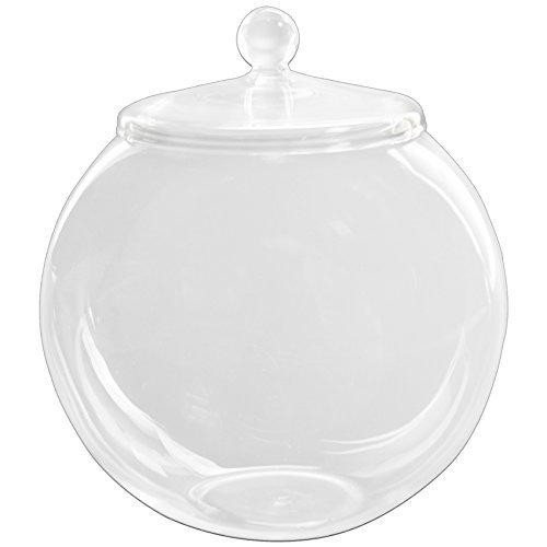 Musykrafties 15 cm Terrarium en verre Pot de Conteneur Cookie Candy Bocal avec couvercle, 5.9\\