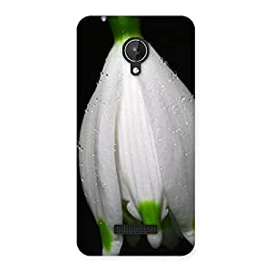 Neo World Snowflake Flower Bloom Back Case Cover for Micromax Canvas Spark Q380