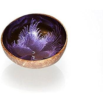 Kokosnuss Schale coconut bowl Deko-Schale Farbe LILA: Amazon.de ...