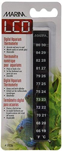 Marina Minerva Digital C/F Thermometer 2