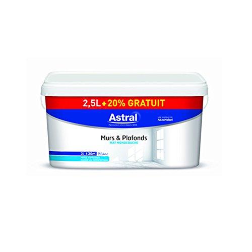 astral-5212017-peinture-pour-murs-plafonds-monocouche-25-l-20-satin