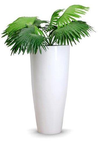 Pflanzkübel Pflanzgefäß Blumenkübel exklusiv Fiberglas Weiß \