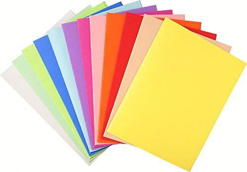 Exacompta 410000E - Lote de 100 Subcarpetas Forever® 250, Colores Surtidos