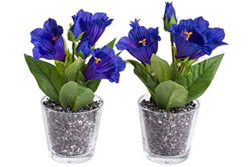 Flora-Seta GmbH künstliches Blumen-Arrangement im Glas (2 Stück)
