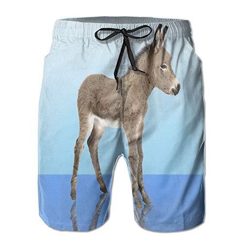 artyly Herren Sommer Esel Quick-Dry Laufen Badehose Boader Shorts Strand Badeanzug Sport, Größe M