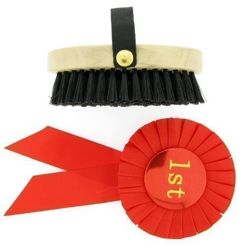 Rocking Horse Brush and Red 1st Rosette from ROCKING RANCH