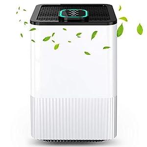 Luftreiniger 4 in 1 mit HEPA-Filter und Ionisator, Luftreiniger für zu Hause mit Luftqualitätsanzeige und Timer, Capture Allergien, Staub, Pollen, Rauch, Tierhaare usw. Ideal für Zuhause, Büro
