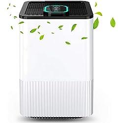 Purificateur d'air 4-en-1 avec Réel Filtre HEPA & Ioniseur, Filtre à Air Domestique avec Indicateur de la Qualité de l'air et Minuterie, Capturer Fumée, Poussière, Pollen, Poils d'animaux,etc