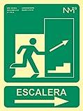 Normaluz RD14150 - Señal Luminiscente Escalera Derecha Arriba Clase B PVC 0,7mm 22,4x30cm con CTE, RIPCI y Apto para la Nueva Legislación