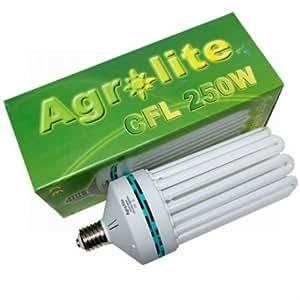 CFL 250W Floraison 2700K° - Agrolite