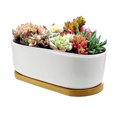Chasegarden en céramique rond Blanc Design Simple Plante Pot/Cactus Pot de fleurs Pot de fleurs avec plateau en bambou/jardinière/boîte/pot de fleurs Blanc Package 16.9cmx9.5cmx5.5cm