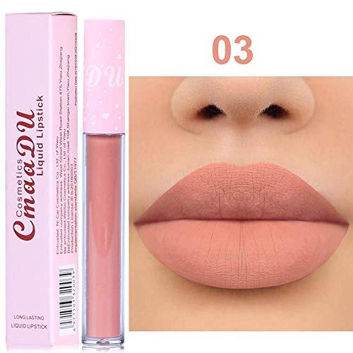 Firally Portable Matte Lip Gloss Nuovo Rossetto a Lunga Durata Impermeabile Opaco Liquido Lip Gloss Lip Liner Cosmetici(Multicolore C)