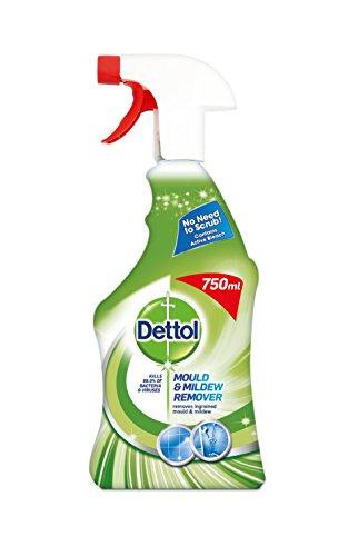 dettol-moule-et-moisissures-pour-vaporisateur-750-ml
