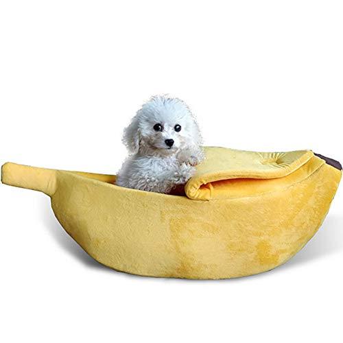 Mi ji Plátano Linda Forma Gato Habitación