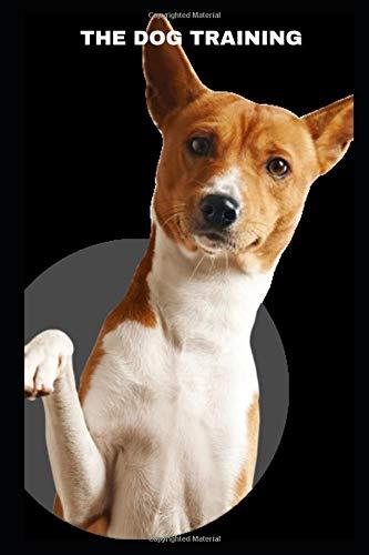 DOG TRAINING (Hunting Dog Training Dummy)