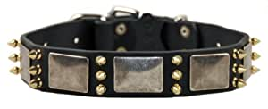 """Dean & Tyler Leather Dog Collar """"Devilish Della"""" - High Quality Leather From Europe!!! - Size Small 43cm - 53cm Neck Size by 4cm width - Black with Nickel Plates - Contact Us If You'd Like It in Brown or Bigger Size!!!"""