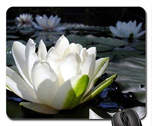 White Waterlily Mouse Pad,Flowers Non-Slip Mouse Pad Office Competitive Mouse Pad 18X22cm