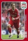 Liverpool FC - Fernando Torres 08/09 - Maxi Poster - 61 cm x 91.5 cm
