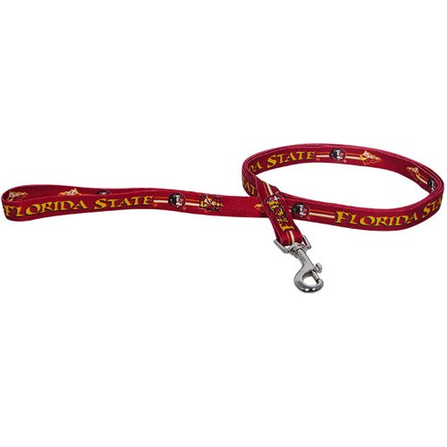 ncaa-floride-florida-state-pet-plomb-grand-equipe-couleur