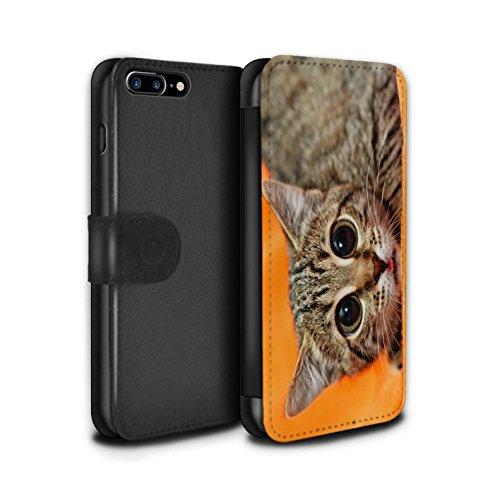 Stuff4 Coque/Etui/Housse Cuir PU Case/Cover pour Apple iPhone 5/5S / Chien somnolent Design / Animaux comiques Collection Chatonne surprise