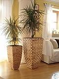 2er Set Wasserhyazinthe Blumenkübel Übertöpfe Pflanzkübel Blumentopf