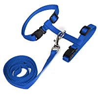 Etopfashion Cat Set of Harness and Lead for Large Cats Nylon (Blue)
