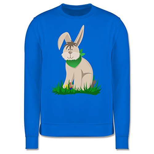 Ostern - Osterhase - Herren Premium Pullover Himmelblau