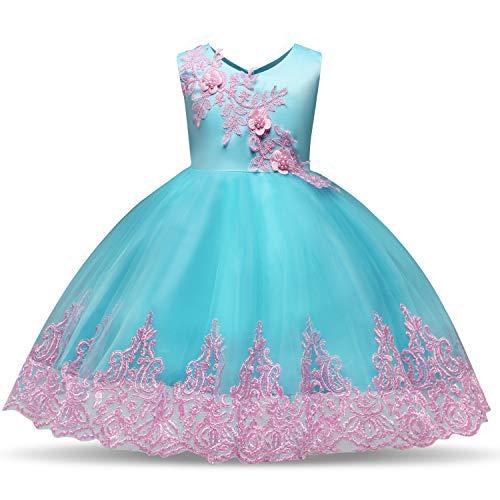 TTYAOVO Baby Mädchen ärmellose bestickte Tüll Chiffon Blume Prinzessin Hochzeit Tutu Kleid Größe (90) 13-24 Monate blau (13 Kleider Größe)
