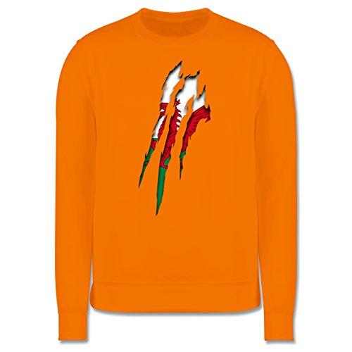 Länder - Wales Krallenspuren - Herren Premium Pullover Orange