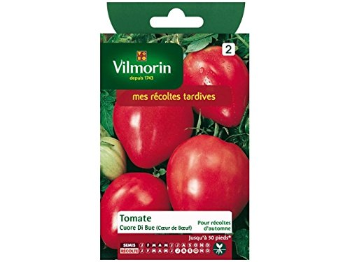 VILMORIN - Sachet Petits Modèles - Tomate cuor di bue