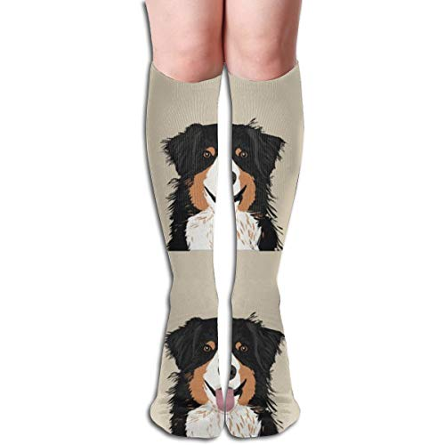 Stocking Australian Shepherd Dog Tri Colored With Cut Lines Dog Panel, Dog, Cut And Sew Multi Colorful Patterned Knee High Socks 19.6Inchs ()