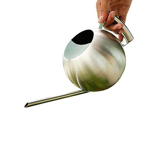 Reze Ball Design 1L Gebürstet Edelstahl Gießkanne Topf Gartengeräte Pflanze Flower (Herzliche Rezepte)