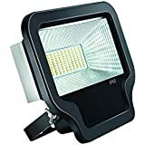 Eveready LEDFL030I6-01 30-Watt LED Flood Light (Black)
