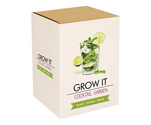 Komplettset zum Cocktail-Kräuter selber züchten