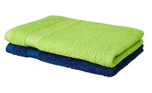 Solimo 100% Cotton 2 Piece Hand Towel Set, 500 GSM (Iris Blue and Spring Green)