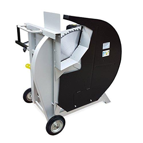 EBERTH 13 PS Benzin Wippsäge (230 mm Holzdurchmesser, Ø 700 mm Hartmetallsägeblatt, luftgekühler 4-Takt Benzinmotor, Bremsschalter, stabiles Untergestell inkl. Fahrgestell) -