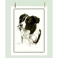 Border Collie Lover regalo–Qualità Bianco Asciugamano di cotone - Border Collie Lovers
