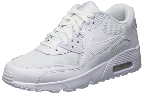 Nike Air Max 90 Mesh Gs, Sneakers Basses Mixte Enfant Blanc Cassé (Bianco)