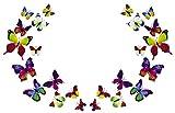 Alexy's Deko 3D Schmetterlinge Wanddeko Magnetisch Selbstklebend Wandaufklebend Wanddekoration Magnete Wandsticker Wandtattoo Wand-Deko Wand-Dekor Aufkleber Dekorationen Kunststoff 24 Stück (Set groß Mehrfarbig)