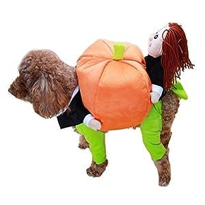 KINGDUO Funny Haustier Hund Kürbis Umzug Anzüge Pet Party Festival Bekleidung Kleidung Kostüm Winter Kleidung-M