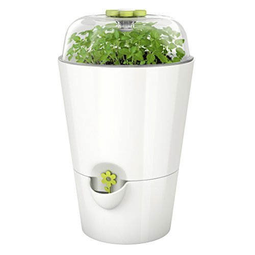 Emsa Kräutertopf mit Pflanzglocke, Starter-Set zum Anpflanzen, Wasserstandsanzeiger, Ø 15,2, Hellgrün, Fresh Herbs Grow, 515565