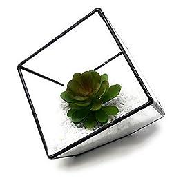 Ultra 10x10x10cm Quadrato Vetro Chiaro Terrario Fioriera Forma Geometrica Per Display Wedding Unico Centrotavola o…