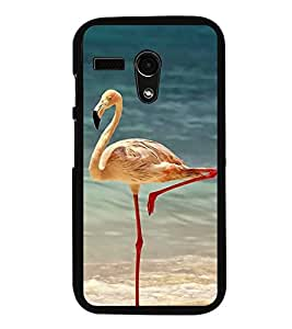 Fiobs Designer Back Case Cover for Motorola Moto G :: Motorola Moto G (1st Gen) :: Motorola Moto G Dual (jaipur rajasthan african america cross pattern)