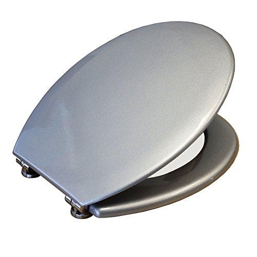Toilettendeckel / Wc Deckel / Toilettensitz / Klodeckel Klositz Silber metalic