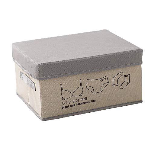 Caja almacenamiento PGYZ tapa artefacto caja plegable
